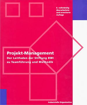 Projektmanagement, Prozessmanagement